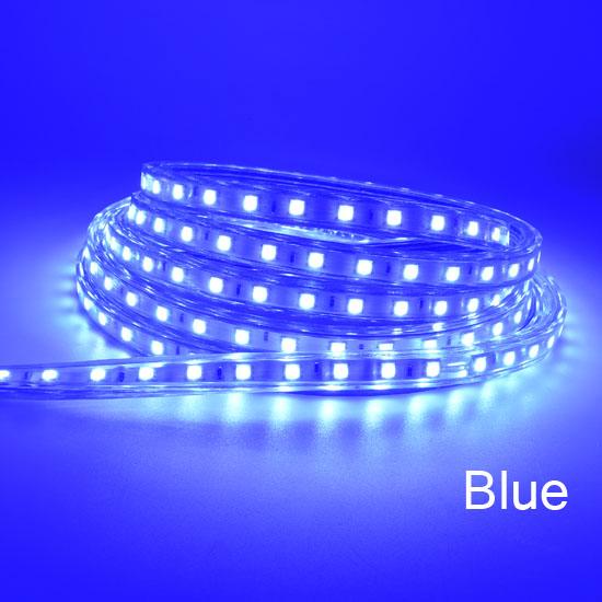 LED Strips  5050 blue
